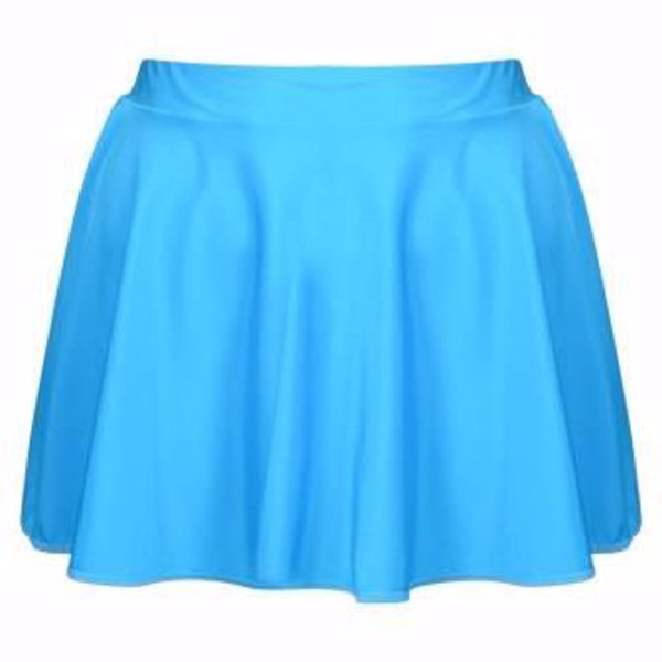 Picture of Circular Skirt Adult